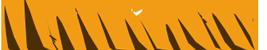 логотип сайта ninjacsgo.ru